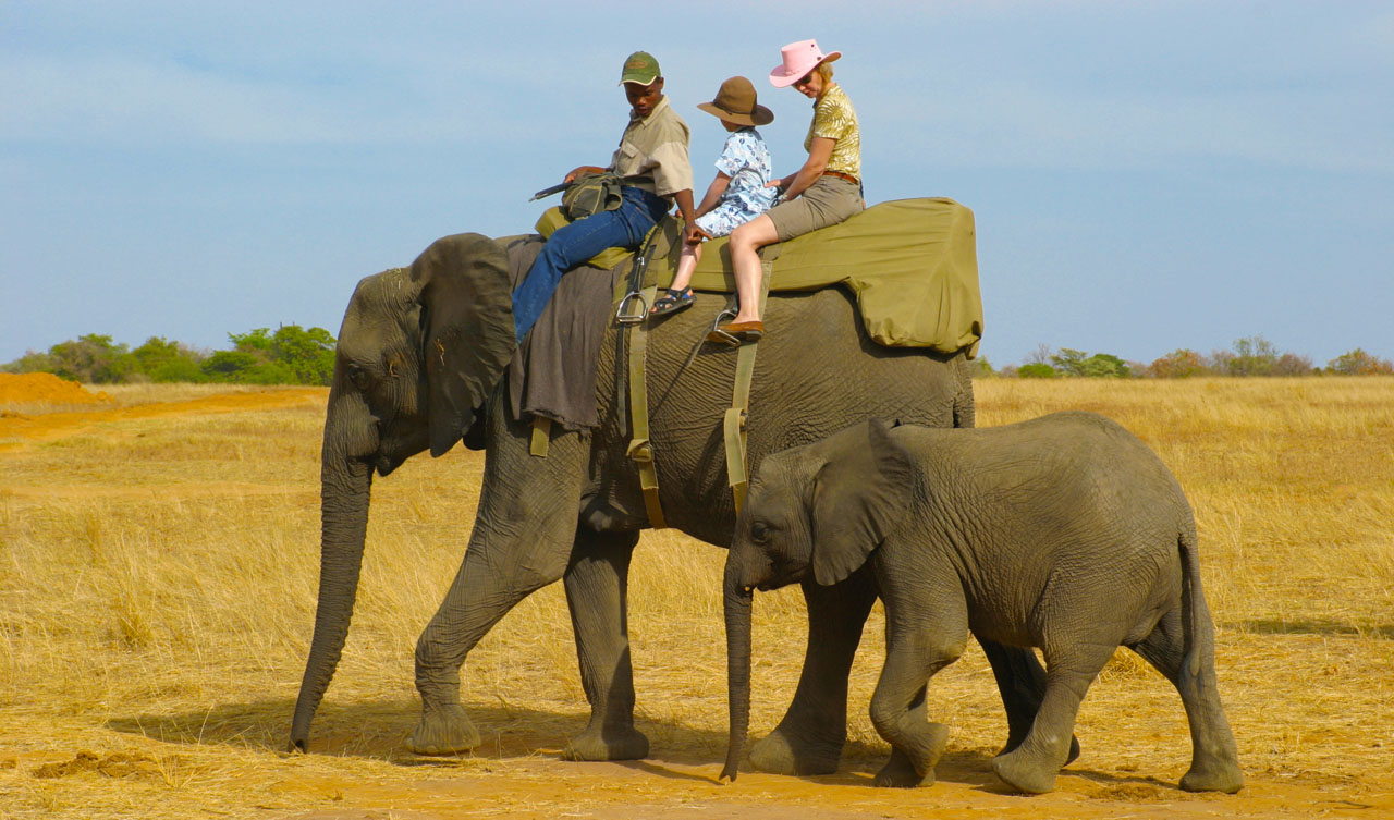 family-holidays-tours-adventure-safaris-elephant-back-rides-africa-safe-planned-thailand-malaysia-beach-camp