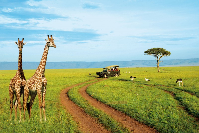 tourist-on-a-kenya-safari
